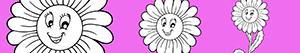 Omalovánky Květ